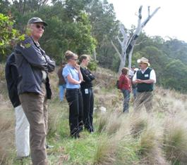 Gippsland Plains and East Gippsland Rainforest CMNs walk and talk